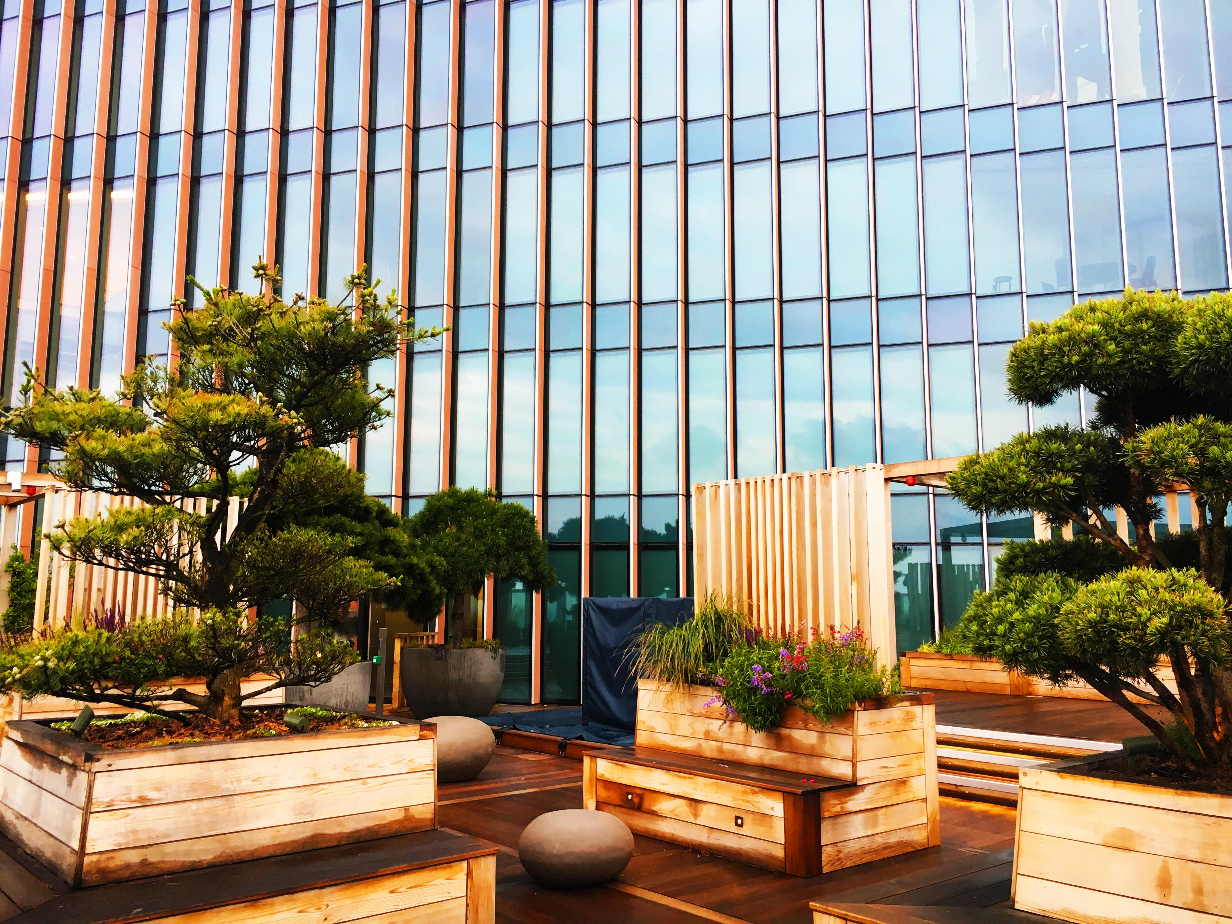 Japanese Garden at Manhattan Loft Gardens